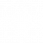 LS_ICON_TRANS_INNOV_WHITE_RGB